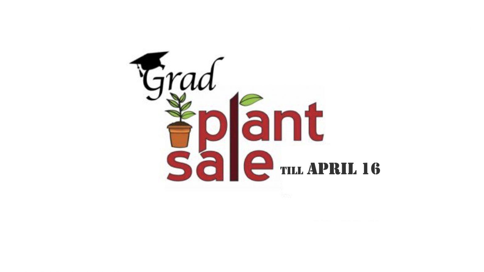 VCS Grad plant sale 2021